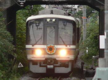 20071014_himawari_tamamizu.jpg