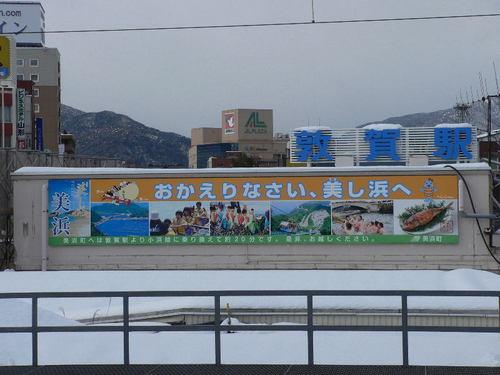 120129.tsuruga.01.jpg