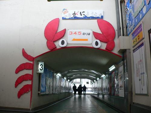 120129.tsuruga.03.jpg