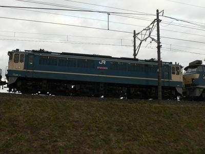 101212_katsutragawa.11.jpg